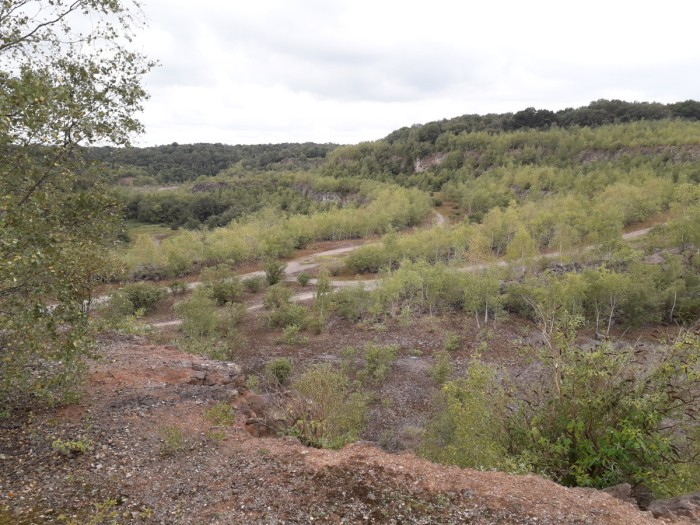 Asham old void quarry - as far as you can see to be filled into the ridge treetop level.